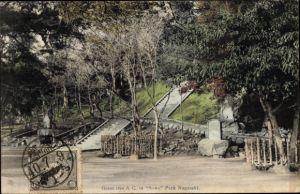 Ak Nagasaki Präf. Nagasaki Japan, Grant tree & C. in Suwa Park Nagasaki
