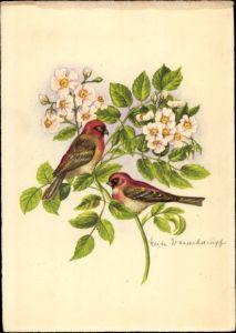 Künstler Ak Wasserhaupt, Herta, Zwei Vögel auf einem blühenden Zweig