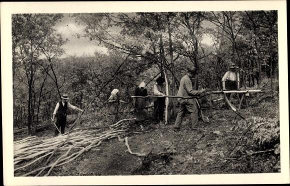 Ak Bauern beim Lohschälen, Siegerland
