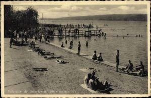Ak Seeburg Seegebiet Mansfelder Land, Strand mit Badegästen