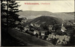 Ak Wildemann Clausthal Zellerfeld im Oberharz, Panorama vom Ort