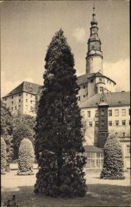 Ak Weesenstein Müglitztal in Sachsen, Parkbild aus Schloss Weesenstein