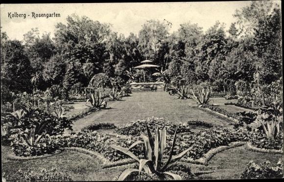 Ak Kołobrzeg Kolberg Pommern, Rosengarten