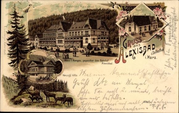 Litho Alexisbad Harzgerode am Harz, Hotel Försterling, Badehaus, Herzogl. Villa, Hirsche