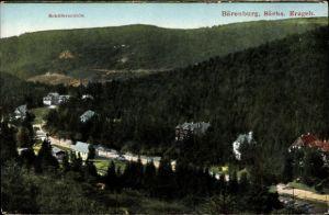 Ak Bärenburg Altenberg im Erzgebirge, Schäfermühle, Blick auf den Ort