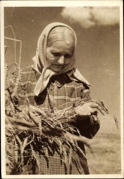 Ak Alte Bäuerin betrachtet Getreideähren, Landwirtschaft