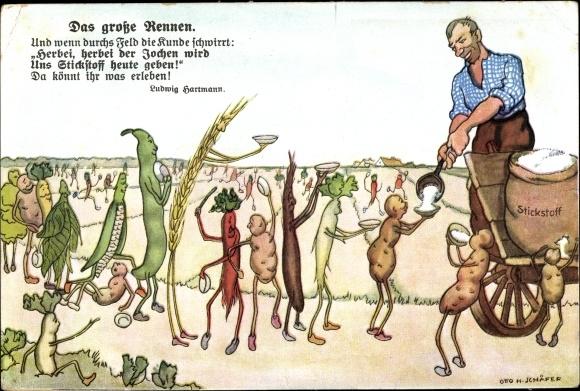 Künstler Ak Schäfer, Otto H., Das große Rennen, Stickstoff, Kali, Gemüse, Landwirt, Dünger