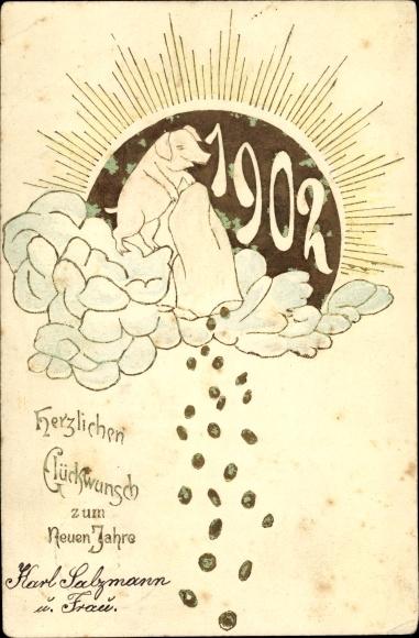 Präge Ak Glückwunsch Neujahr, Glücksschwein, Geldregen, Jahreszahl 1902