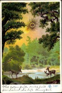 Sonnenschein Litho Hirsche auf Lichtung, Waldmotiv