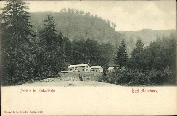 Ak Bad Harzburg in Niedersachsen, Partie im Radautal, Häuser, Wald, Stengel 9250