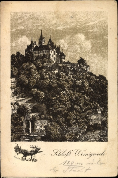 Künstler Ak Jander, Franz, Wernigerode am Harz, Schloss Wernigerode, Parnorama