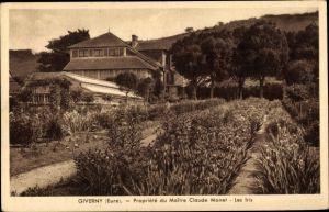 Ak Giverny Eure, Propriete du Maitre Claude Monet, Les Iris