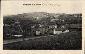 Ak Belmont Loire, Vue générale