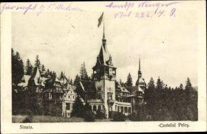 Ak Sinaia Rumänien, Castelul Peles