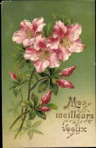 Präge Litho Mes meilleurs voeux, Lilienblüten, Knospen