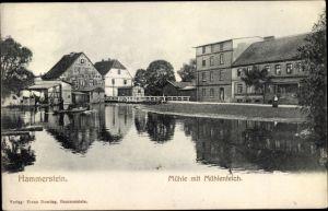 Ak Czarne Hammerstein Westpreußen, Mühle mit Mühlenteich