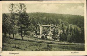 Ak Sokołowsko Blitzengrund Schlesien, Sanatorium, Waldpanorama