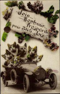 Ak Glückwunsch Geburtstag, Katzen als Autofahrer, Stiefmütterchen