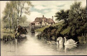 Künstler Ak Hayes, F.W., Schwäne, Wassermühle
