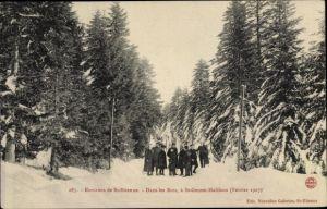 Ak Saint Etienne Loire, Dans les Bois a Saint Genest Malifaux