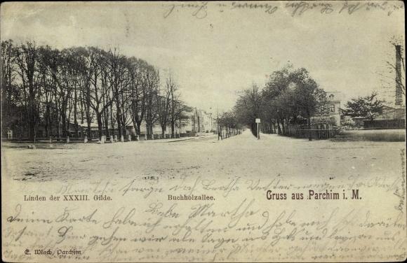 Ak Parchim in Mecklenburg Vorpommern, Buchholzallee, Linden der XXXIII Gilde