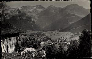 Ak Ormont Dessous Kt. Waadt Schweiz, Les Diablerets, Panorama, Ziegen