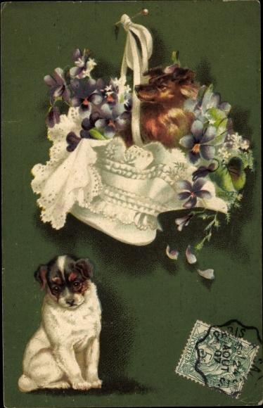 Litho Kleiner Hund im Blumenkorb, Hündchen wartet darunter