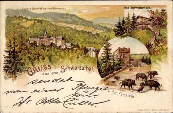 Litho Schwarzburg im Schwarzatal Thüringen, Schloss, Schweizerhaus, Wildschweine am Eberstein