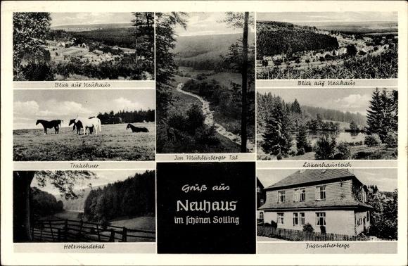 Ak Neuhaus im Solling Holzminden in Niedersachsen, Blick auf den Ort, Trakehner, Jugendherberge