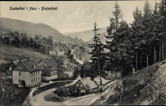 Ak BergstadtLautenthal Langelsheim am Harz, Wohnhäuser im Bischofstal