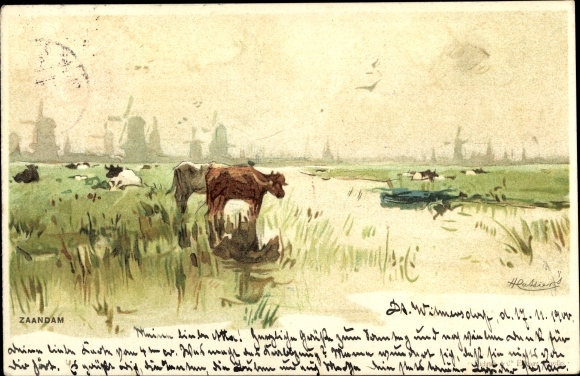 Künstler Litho Cassiers, H., Zaandam Nordholland, Uferlandschaft mit Rinderherde, Windmühlen
