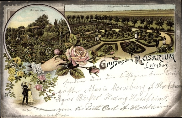 Litho Leimbach Mansfeld im Harzvorland, Rosarium, Im großen Rondel, Rosenhain, Im Saal