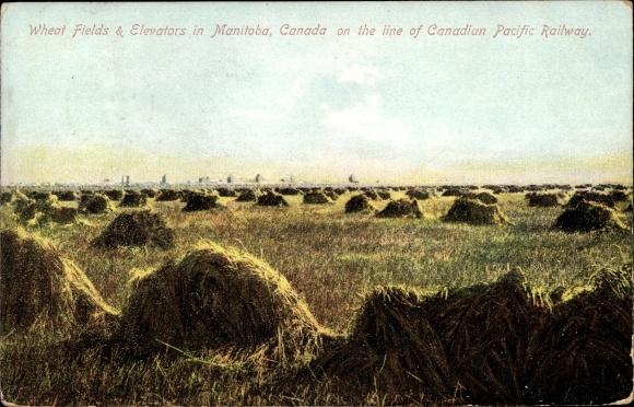 Ak Manitoba Kanada, Wheat Fields, Elevators, Canadian Pacific Railway