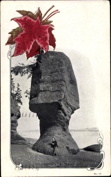 Ak New Brunswick Kanada, Rocks at Hopewell Cape, Ahornblätter