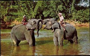 Ak Kandy Ceylon Sri Lanka, Elephants at Play, Mahaweli Ganga