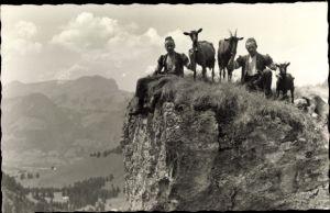 Ak Schweiz, Ziegenhirten mit Ziegen an einem Felsabgrund