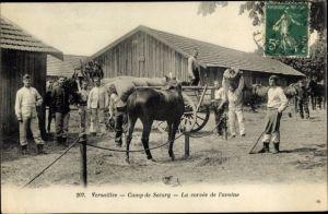 Ak Versailles Yvelines, Camp de Satory, La corvee de l'avoine, chevaux