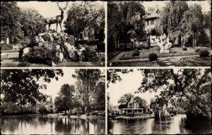 Ak Le Vesinet Yvelines, Cerf au Rond Point Royal, Ibis, Trois Sirenes, Lac de Croissy, Temple Prot.