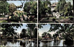 Ak Le Vesinet Yvelines, Cerf au Rond Point Royal, Les Ibis, Trois Sirenes, Lac de Croissy, Temple