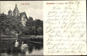 Ak Gautzsch Markkleeberg Sachsen, Villa Polich, Schwäne auf dem Teich
