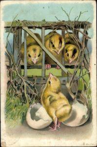 Ak Glückwunsch Ostern, Küken schlüpft aus Osterei, Küken im Käfig