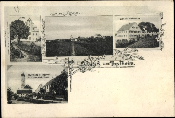 Ak Tapfheim bayr. Schwaben, Schloss, Brauerei Stadelmeier, Pfarrkirche, Pfarrhof, Forsthaus, Schule