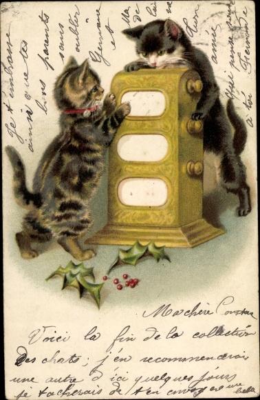 Ak Zwei Katzen an einem Automaten, Ilex