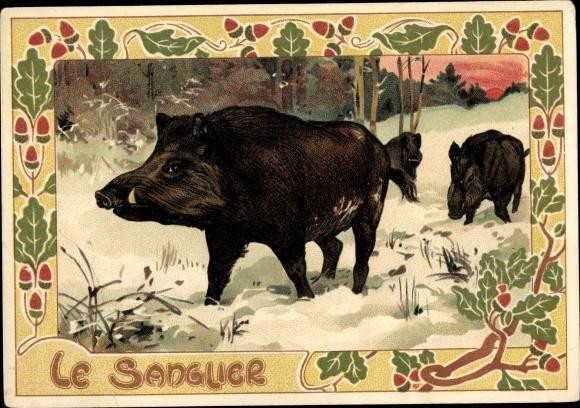 Passepartout Ak Le Sanguer, Wildschweine im Schnee