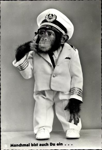 Ak Manchmal bist auf Du ein Affe, Schimpanse in Uniform, Käpten Jo's Jimmy