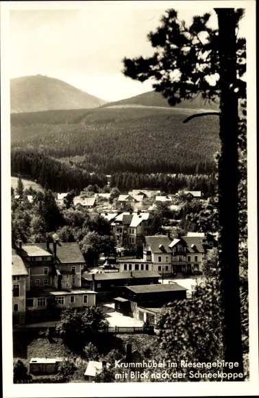 Ak Karpacz Krummhübel Riesengebirge Schlesien, Blick zur Schneekoppe