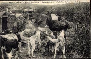 Ak Villers Cotterets Aisne, Équipage Menier, Hallali de Cerf sur un toit