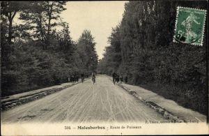 Ak Malesherbes Loiret, Route de Puiseaux