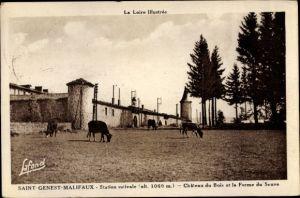 Ak Saint Genest Malifaux Loire, Station estivale, Chateau du Bois et la Ferme du Seuve