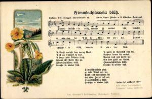 Lied Ak Günther, Anton, Himmlschlüssela blüh, Mundart Nr 44